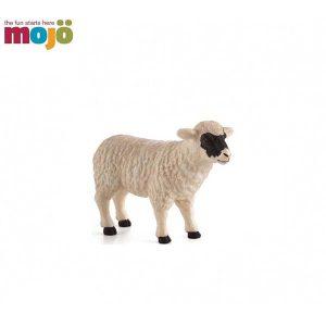 حیوانات موجو گوسفند (قرمز)